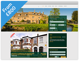Panorama Theme Estate Agent Website